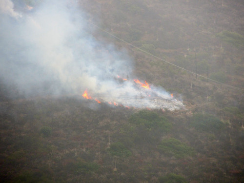 small brush fire in Malibu