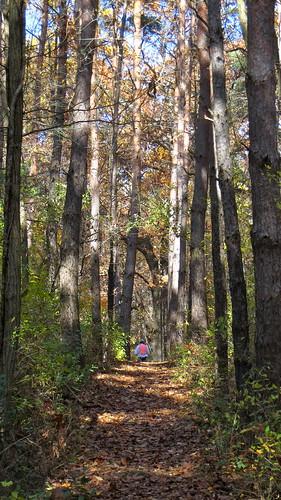 nature michigan orienteering smoc pinckney