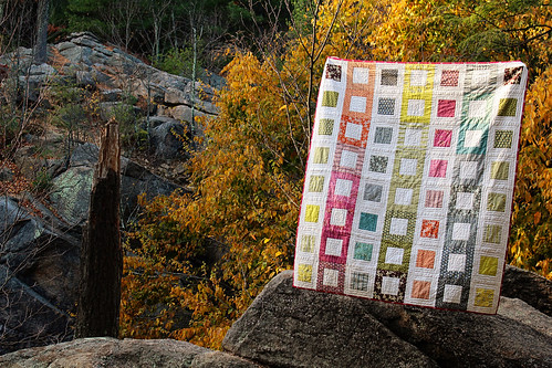 Hand Quilted Hope Valley Filmstrip Quilt