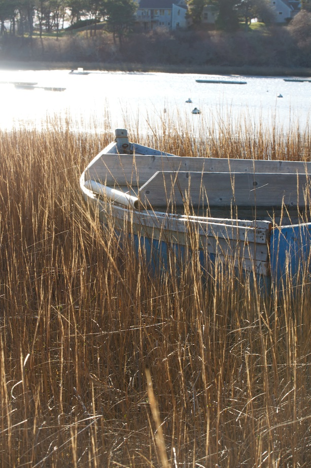 boat in grass