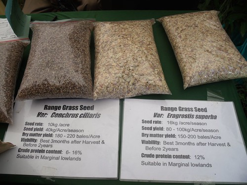 KARI display of range grass seed at KARI event