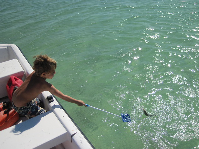 cash netting in the bahamas