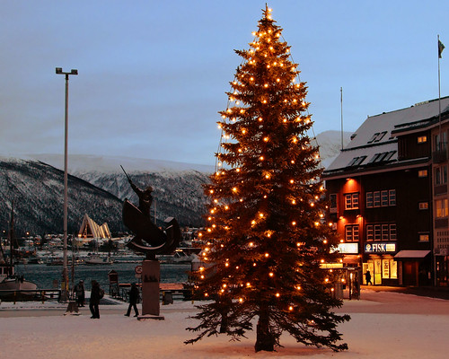 Tromsø Christmas Tree