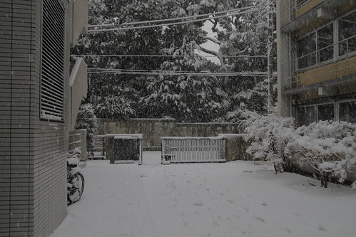 Back entrance of Wakeijuku in snow