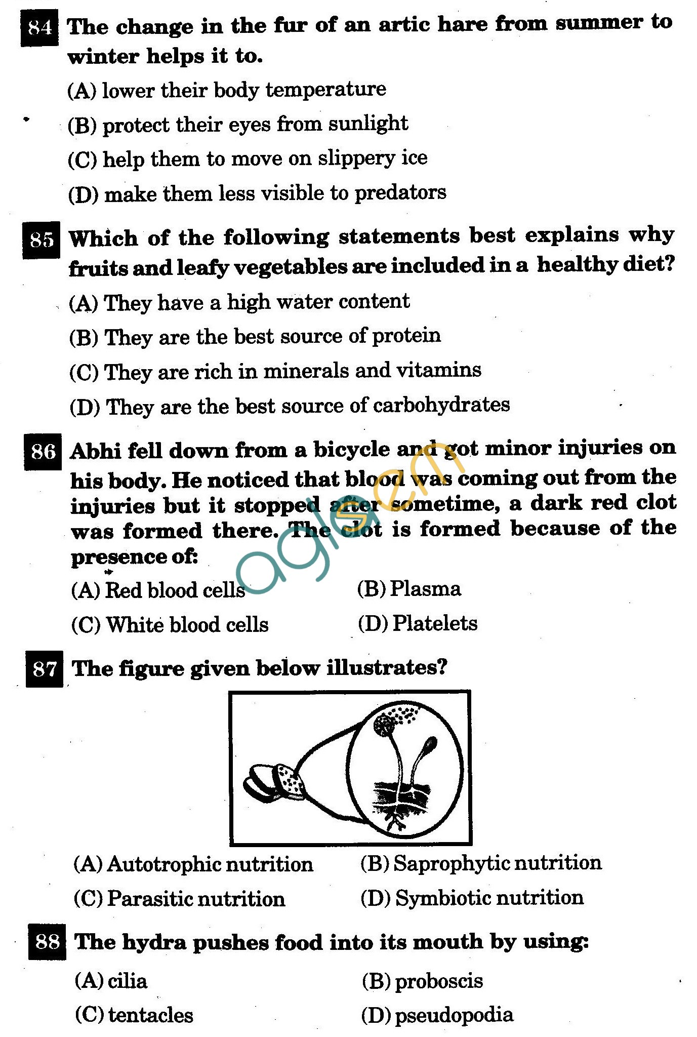 NSTSE 2011 Class VII Question Paper with Answers - Biology