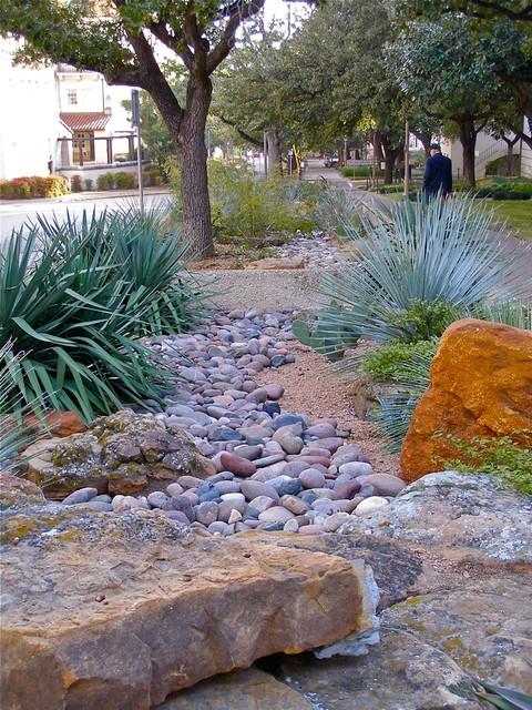 Xeriscape texas style flickr photo sharing for Xeriscape garden design