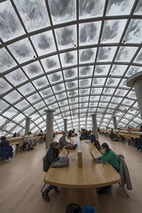 Students study under snow-dusted Mansueto Library dome