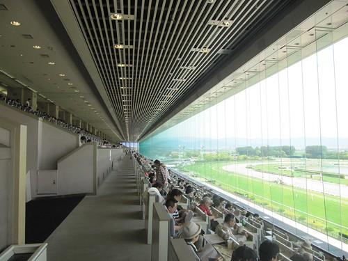 京都競馬場改修