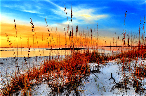 beach gulfofmexico nature sunrise florida earlymorning coastal seashore panamacitybeach seaoats gulfcoast standrewsstatepark standrewsbay floridastateparks nikond3100 nikkor1855afsvrlens corelpaintshoppro6x