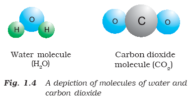 Pure substances can be further classified into elements and compounds
