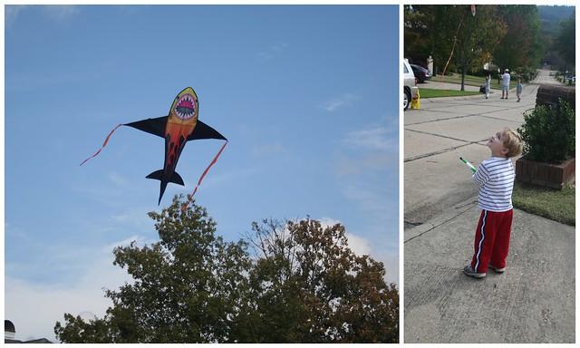Flying Kites1