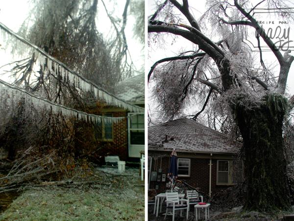 Ice Storm in 07