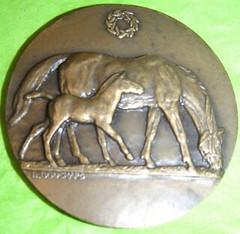 Horse Medal