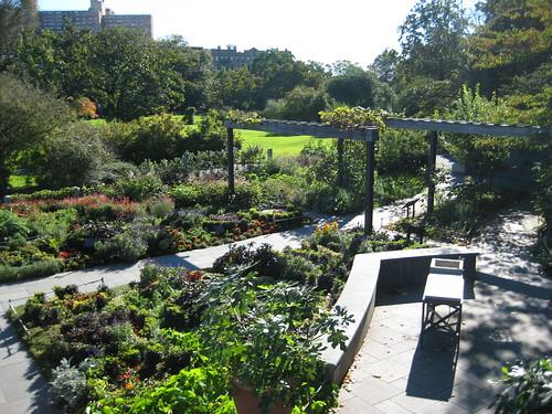 Herb Garden from Platform