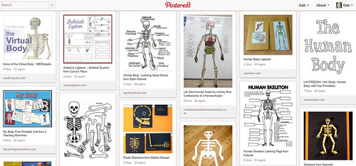 Human Body Unit Study Pinterest Board