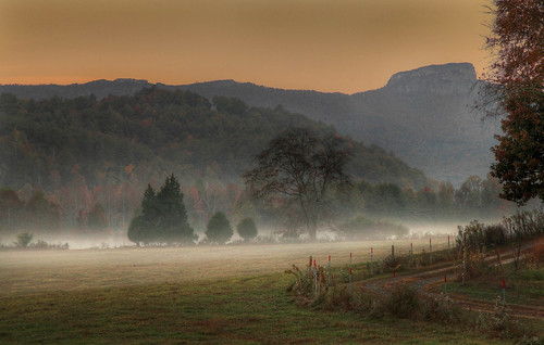 "autumn usa mist fall fog canon landscape nc cows mark farm silhouettes 5d ii"" 2012 farm"" thegalaxy ""canon colors"" ""ground ""north carolina"" mist"" ""cattle ""vibrant mygearandme mygearandmepremium mygearandmebronze mygearandmesilver mygearandmegold mygearandmeplatinum mygearandmediamond 24mm105mm"" rememberthatmomentlevel4 rememberthatmomentlevel1 rememberthatmomentlevel2 rememberthatmomentlevel3 rememberthatmomentlevel7 rememberthatmomentlevel9 rememberthatmomentlevel5 rememberthatmomentlevel6 rememberthatmomentlevel8 rememberthatmomentlevel10 ""cattle"" vigilantphotographersunite vpu2 vpu3 vpu4 vpu5 vpu6 vpu7 vpu8 vpu9 vpu10"