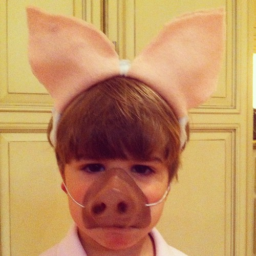 Farm day at school. My little pig!