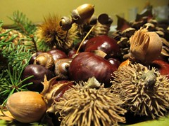 coconut(0.0), flower(0.0), branch(0.0), tree(0.0), christmas decoration(0.0), autumn(0.0), chestnut(1.0), nuts & seeds(1.0), plant(1.0), produce(1.0), food(1.0), nut(1.0),