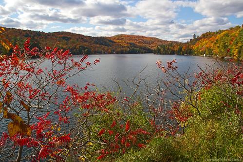 ontario canada fall quebec fallcolors fallcolours gatineauhills lacsaintpierre saintpierredewakefield danagc