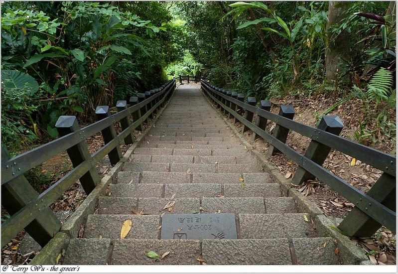 象山芭樂步道-9