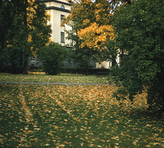Archidiakoni Plass bak Rådhuset (1955)