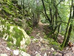 Chemin de la Montagne : après le Valdu Grande, le chemin démaquisé