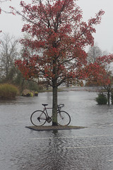 Bicycle Island by eclectic echoes on FlickR, http://www.flickr.com/photos/eclectic-echoes/8150757756/sizes/s/