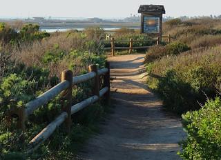 Bolsa Chica Wetland trails