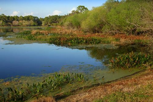 usa america port pond florida charlotte north northamerica fl ollies