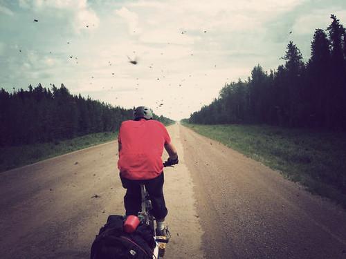 Riding North