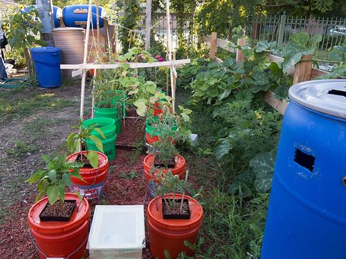 El Paseo Community Garden – NeighborSpace