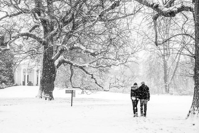 London - Winter Walk