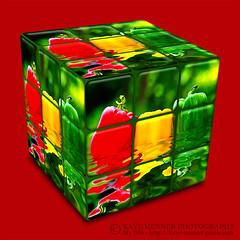 Kitchen Cube by Kaye Menner