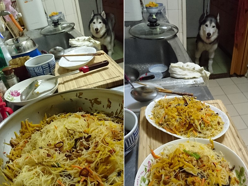 Doggy貪吃狗4盤1