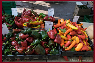 Plenty of Hot Peppers Today