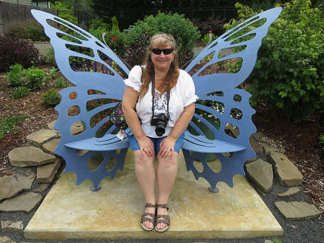 Butterfly Bench IMG_1624
