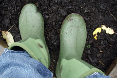 green garden boots in the mud