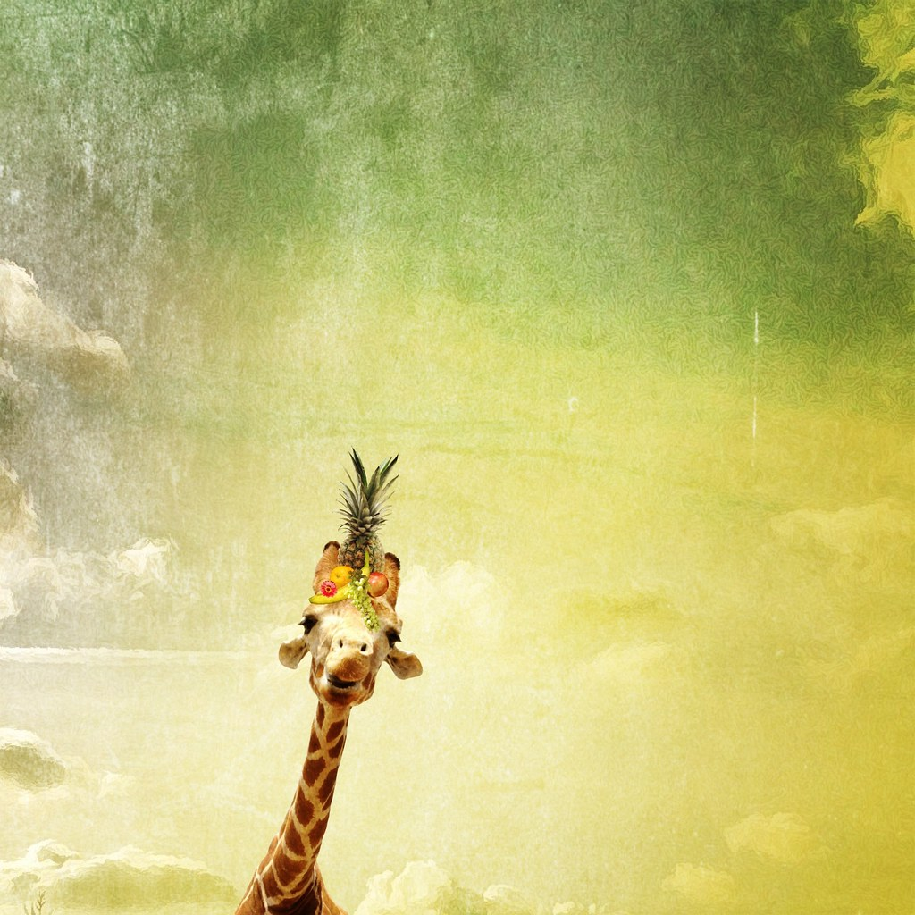 "Tired of being overshadowed by the other giraffes, she decided it was time to debut ""the Carmen Miranda"""