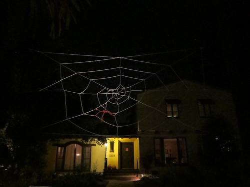 Nighttime web