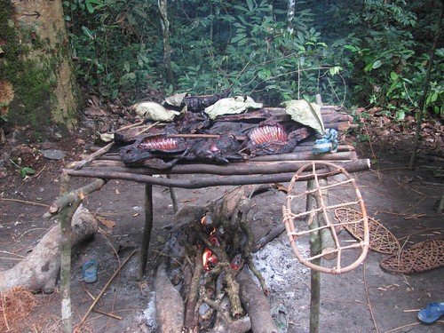 meat drying in poacher's camp