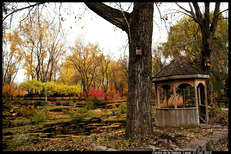 Vos photos d'automne  8114429232_18f5c2b38b_o