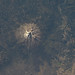 Mount Shasta, California (NASA, International Space Station, 09/20/12)