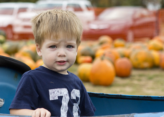 pumpkinpatch_36