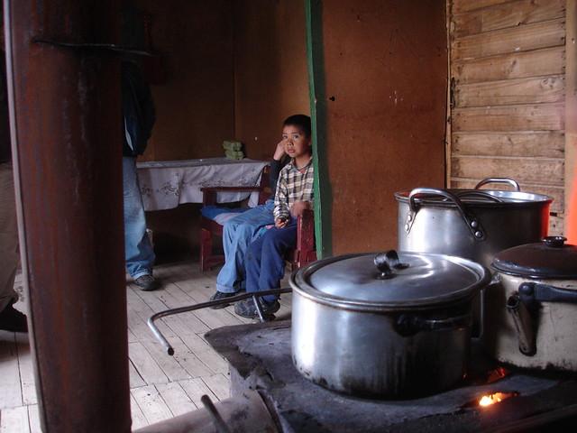 image Cornudo esperando su comida