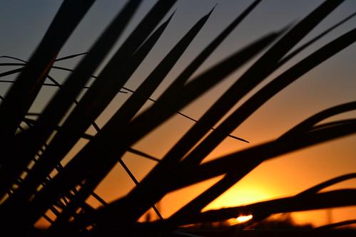 sun silhouette sunrise landscape sunscape