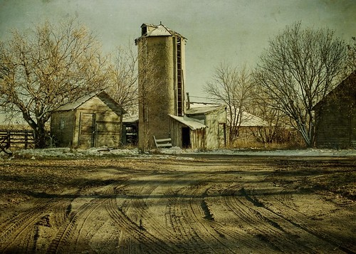 trees winter light snow cold barn rural canon landscape afternoon shadows farm barns silo hdr textured ruts t1i applesandsisters