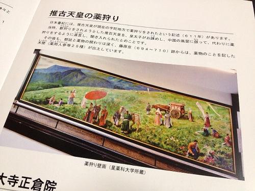 奈良の「薬」のデザインがレトロ-14
