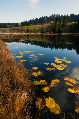 lake lac jura comte doubs franche natureandpeopleinnature