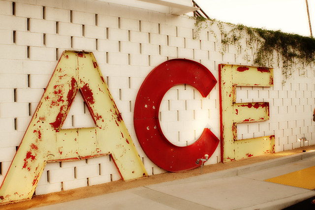 Welcome to the ACE