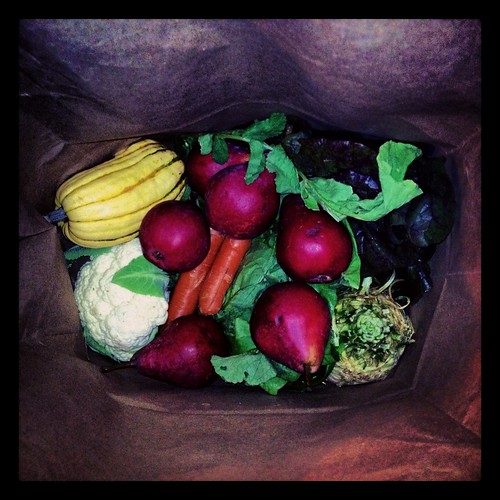 fallhaul by Nature Morte